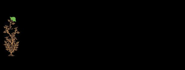 Micasasté